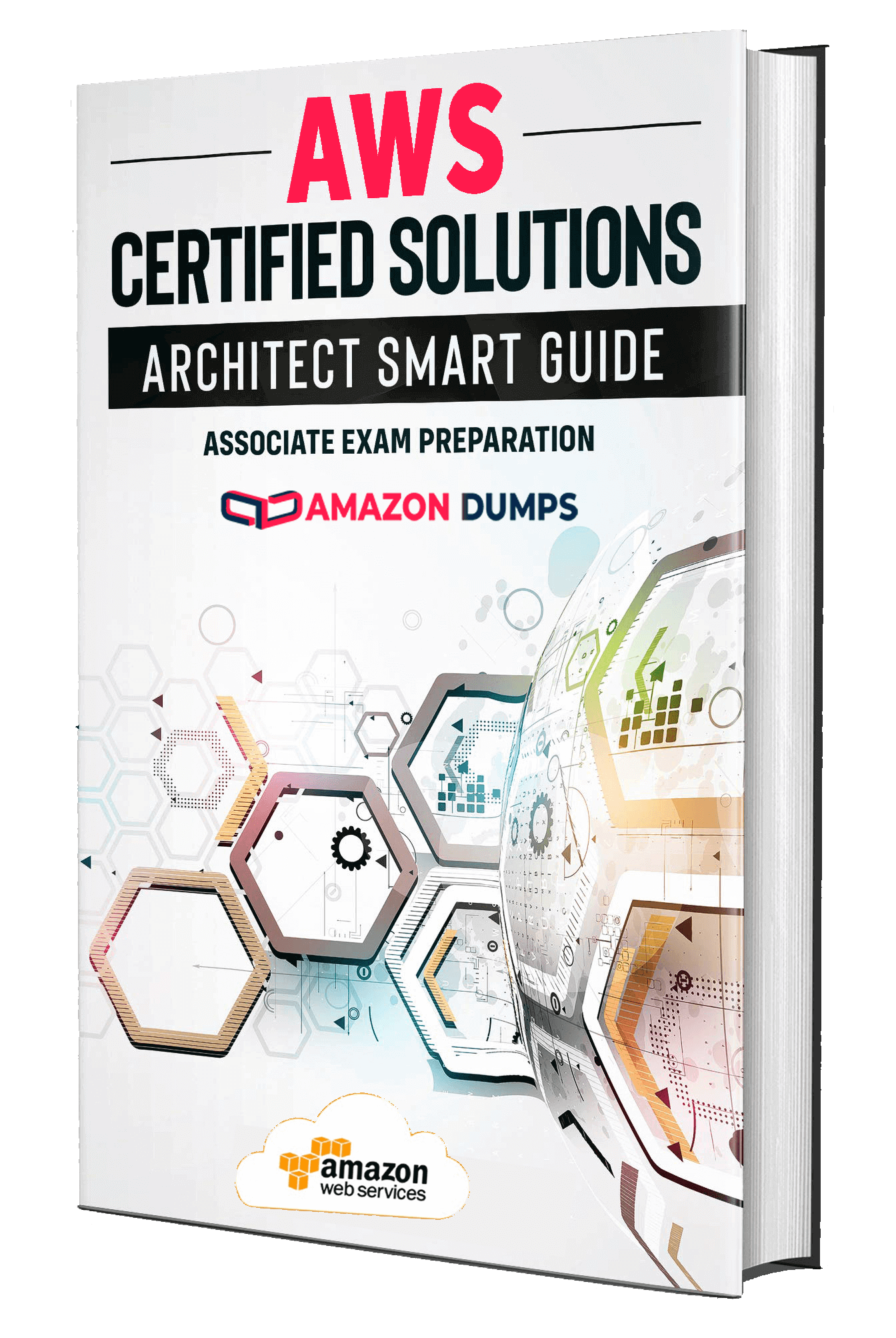 Amazon AWS-Solutions-Architect-Associate dumps